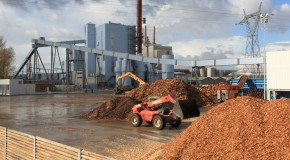 Centrale di combustione a Biomasse nel cuore del Mugello?